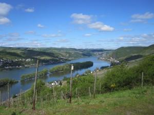Rheinsteig_Kaub_Assmannshausen_001