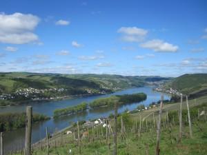 Rheinsteig_Kaub_Assmannshausen_002